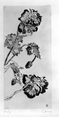 Ernest-Ange Duez (French, 1843-1896). <em>Fleurs</em>, 1894. Drypoint on laid paper, 16 x 7 1/2 in. (40.6 x 19 cm). Brooklyn Museum, Charles Stewart Smith Memorial Fund, 38.376 (Photo: Brooklyn Museum, 38.376_bw.jpg)
