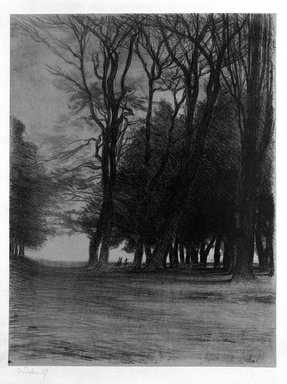 Charles-Marie Dulac (French, 1865-1898). <em>Bouquet d'arbres</em>, 1894. Lithograph on thin paper laid down, 18 11/16 x 14 3/16 in. (47.4 x 36.1 cm). Brooklyn Museum, Charles Stewart Smith Memorial Fund, 38.405 (Photo: Brooklyn Museum, 38.405_bw.jpg)