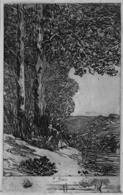 Félicien Rops (Belgian, 1833-1898). <em>La Ramasseuse de Fagots</em>, 1895. Etching on heavy laid paper, 11 5/16 x 7 1/2 in. (28.7 x 19 cm). Brooklyn Museum, Charles Stewart Smith Memorial Fund, 38.425 (Photo: Brooklyn Museum, 38.425_acetate_bw.jpg)
