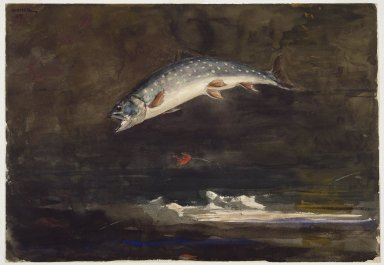 Winslow Homer (American, 1836-1910). <em>Jumping Trout</em>, 1889. Watercolor over graphite on cream, medium-weight, moderately textured wove paper, 13 15/16 x 19 15/16 in. (35.4 x 50.6 cm). Brooklyn Museum, Dick S. Ramsay Fund, 41.220 (Photo: Brooklyn Museum, 41.220_SL3.jpg)