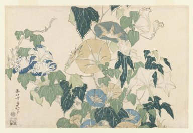 Katsushika Hokusai (Japanese, 1760-1849). <em>Morning Glories and Tree Frog, from an untitled series known as Large Flowers</em>, ca. 1833-1834. Color woodblock print on paper, 9 3/4 x 14 11/16 in. (24.8 x 37.3 cm). Brooklyn Museum, Frank L. Babbott Fund, 41.603 (Photo: Brooklyn Museum, 41.603_IMLS_PS3.jpg)