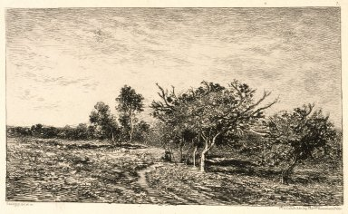 Charles-François Daubigny (French, 1817-1878). <em>Apple Trees at Auvers (Pommiers à Auvers)</em>, 1877. Etching on heavy laid paper, Sheet: 13 1/4 x 20 1/8 in. (33.7 x 51.1 cm). Brooklyn Museum, Gift of J. Oettinger, 43.117.4 (Photo: Brooklyn Museum, 43.117.4_reference_SL1.jpg)