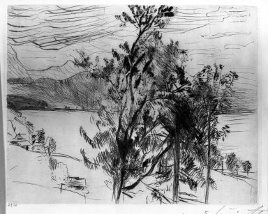Lovis Corinth (German, 1858-1925). <em>View of the Walchensee (Blick am Walchensee)</em>, 1920. Etching and drypoint on wove paper, Image (Plate): 7 5/8 x 9 7/8 in. (19.4 x 25.1 cm). Brooklyn Museum, Gift of Lewis Turner, 47.139.2.4 (Photo: Brooklyn Museum, 47.139.2.4_acetate_bw.jpg)