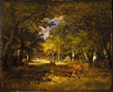 Narcisse-Virgile Diaz de la Peña (French, 1807-1876). <em>Forest Scene</em>, 1844-1860. Oil on cradled panel, 17 11/16 x 21 5/8 in. (44.9 x 54.9 cm). Brooklyn Museum, Gift of Charlotte R. Stillman, 51.11 (Photo: Brooklyn Museum, 51.11_SL1.jpg)