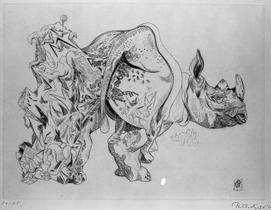 Gabor Peterdi (American, born Hungary, 1915-2001). <em>Rhinoceros</em>, 1936. Engraving on paper, 8 11/16 x 11 11/16 in. (22 x 29.7 cm). Brooklyn Museum, Gift of Martin Segal, 53.114.5. © artist or artist's estate (Photo: Brooklyn Museum, 53.114.5_acetate_bw.jpg)
