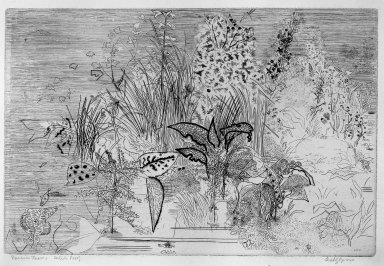 Anthony Gross (British, 1905-1984). <em>Riverside Leaves</em>, 1950. Etching and engraving on wove paper, 9 13/16 x 14 3/4 in. (25 x 37.5 cm). Brooklyn Museum, A. Augustus Healy Fund, 53.168.36. © artist or artist's estate (Photo: Brooklyn Museum, 53.168.36_acetate_bw.jpg)