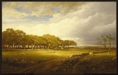 William Trost Richards (American, 1833-1905). <em>Old Orchard at Newport</em>, 1875. Oil on canvas, 25 x 40in. (63.5 x 101.6cm). Brooklyn Museum, Bequest of Mrs. William T. Brewster through the National Academy of Design, 53.224 (Photo: Brooklyn Museum, 53.224_SL1.jpg)