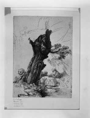 Rembrandt Harmensz. van Rijn (Dutch, 1606-1669). <em>Saint Jerome Beside a Pollard Willow</em>, 1648. Etching and drypoint on laid paper, Plate: 7 3/16 x 5 1/4 in. (18.3 x 13.3 cm). Brooklyn Museum, Gift of Mrs. Horace O. Havemeyer, 54.35.10 (Photo: Brooklyn Museum, 54.35.10_acetate_bw.jpg)