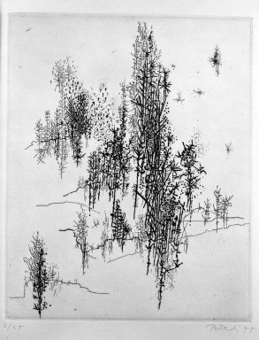 Gabor Peterdi (American, born Hungary, 1915-2001). <em>Wild Flowers</em>, 1955. Etching and engraving on paper, sheet: 11 5/8 x 8 3/4 in. (29.5 x 22.2 cm). Brooklyn Museum, Dick S. Ramsay Fund, 55.160.1. © artist or artist's estate (Photo: Brooklyn Museum, 55.160.1_acetate_bw.jpg)