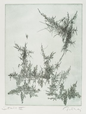 Gabor Peterdi (American, born Hungary, 1915-2001). <em>Swamp X</em>, 1955. Etching and engraving on paper, sheet: 15 3/8 x 11 1/2 in. (39.1 x 29.2 cm). Brooklyn Museum, Gift of the artist, 55.213.1. © artist or artist's estate (Photo: Brooklyn Museum, 55.213.1_PS4.jpg)
