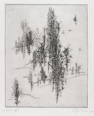 Gabor Peterdi (American, born Hungary, 1915-2001). <em>Wild Flowers</em>, 1955. Etching and engraving on paper, sheet (State I): 13 x 8 3/4 in. (33 x 22.2 cm). Brooklyn Museum, Gift of the artist, 55.213.2. © artist or artist's estate (Photo: Brooklyn Museum, 55.213.2_PS4.jpg)