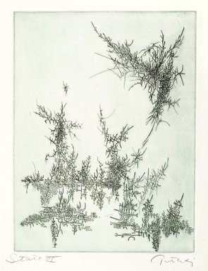 Gabor Peterdi (American, born Hungary, 1915-2001). <em>Cascade</em>, 1955. Engraving and etching on paper, sheet: 15 1/4 x 11 1/2 in. (38.7 x 29.2 cm). Brooklyn Museum, Gift of the artist, 55.213.3. © artist or artist's estate (Photo: Brooklyn Museum, 55.213.3_PS6.jpg)