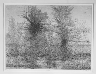 Gabor Peterdi (American, born Hungary, 1915-2001). <em>Winter I</em>, 1956. Etching and engraving on paper, image: 17 3/4 x 23 7/8 in. (45.1 x 60.6 cm). Brooklyn Museum, Dick S. Ramsay Fund, 56.74. © artist or artist's estate (Photo: Brooklyn Museum, 56.74_acetate_bw.jpg)