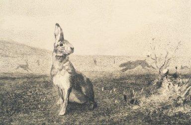Félix Bracquemond (French, 1833-1914). <em>L'Inconnu</em>, n.d. Etching on laid paper, 7 1/2 x 12 5/8 in. (19.1 x 32.1 cm). Brooklyn Museum, Gift of Mrs. Howard M. Morse, 59.53.2 (Photo: Brooklyn Museum, 59.53.2_transpc007.jpg)