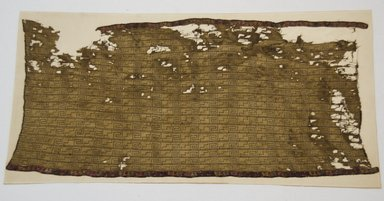 Nazca. <em>Mantle or Textile Fragment, Undetermined</em>, 200-600 C.E. Cotton, camelid fiber, 17 11/16 x 38 3/16 in. (44.9 x 97 cm). Brooklyn Museum, Gift of Adelaide Goan, 64.114.171 (Photo: Brooklyn Museum, 64.114.171_front_PS5.jpg)
