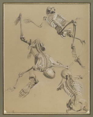 Daniel Huntington (American, 1816-1906). <em>Study of Skeletons</em>, July 1848. Black and white chalk and black crayon on tan paper mounted to paperboard, Sheet (irregular): 21 9/16 x 16 7/16 in. (54.8 x 41.8 cm). Brooklyn Museum, Gift of The Roebling Society, 68.167.2 (Photo: Brooklyn Museum, 68.167.2_IMLS_PS4.jpg)