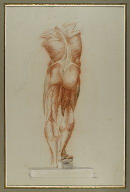 Daniel Huntington (American, 1816-1906). <em>Écorché (Figure Study of Musculature)</em>, ca. 1848. Red, brown, white, and black crayon with graphite underdrawing on blue-green, medium-weight, slightly textured wove paper, Sheet: 21 3/4 x 14 15/16 in. (55.2 x 37.9 cm). Brooklyn Museum, Gift of The Roebling Society, 68.167.4 (Photo: Brooklyn Museum, 68.167.4_IMLS_PS4.jpg)