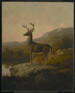 Thomas Hewes Hinckley (American, 1813-1896). <em>Deer</em>, 1855. Oil on canvas, 36 1/8 x 28 15/16 in. (91.8 x 73.5 cm). Brooklyn Museum, Dick S. Ramsay Fund, 68.95 (Photo: Brooklyn Museum, 68.95_PS2.jpg)