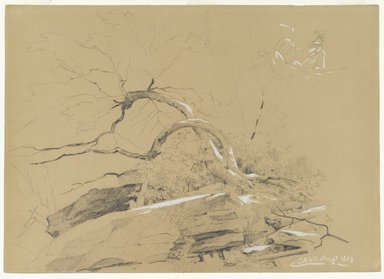 David Johnson (American, 1827-1908). <em>Catskills</em>, August 1873. Graphite and white opaque highlights on gray/brown, moderately thick, smooth wove paper, Sheet: 10 x 14 in. (25.4 x 35.6 cm). Brooklyn Museum, Dick S. Ramsay Fund, 69.60 (Photo: Brooklyn Museum, 69.60_PS1.jpg)