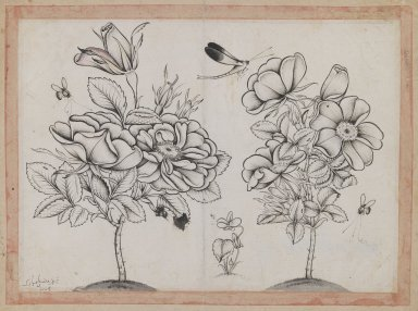 Shafi' Abbasi. <em>Rosebushes, Bees, and a Dragonfly</em>, AH 1079 /1669 C.E. Ink on paper, Page: 8 7/8 x 6 9/16 in. (22.5 x 16.6 cm). Brooklyn Museum, Gift of Mr. and Mrs. Charles K. Wilkinson, 72.26.14 (Photo: Brooklyn Museum, 72.26.14_IMLS_PS3.jpg)