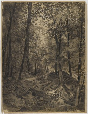 William Trost Richards (American, 1833-1905). <em>Forest Scene with Rocky Brook</em>, ca. 1864-67. Charcoal on cream, moderately thick, slightly textured wove paper mounted to paper., Sheet (drawing): 22 13/16 x 17 13/16 in. (57.9 x 45.2 cm). Brooklyn Museum, Gift of Edith Ballinger Price, 72.32.2 (Photo: Brooklyn Museum, 72.32.2_IMLS_PS4.jpg)