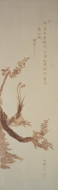 <em>Peacock on Blossoming Plum Branch</em>, late 19th-early 20th century. Branding, ink, and light color on paper, 38 11/16 x 11 15/16 in. (98.3 x 30.4 cm). Brooklyn Museum, Designated Purchase Fund, 75.65.5 (Photo: Brooklyn Museum, 75.65.5.jpg)