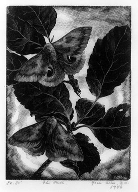 Grace Arnold Albee (American, 1890-1995). <em>The Moth</em>, 1946. Wood engraving on paper, Image: 5 1/4 x 3 3/4 in. (13.3 x 9.5 cm). Brooklyn Museum, Gift of the artist, 76.198.38. © artist or artist's estate (Photo: Brooklyn Museum, 76.198.38_bw.jpg)