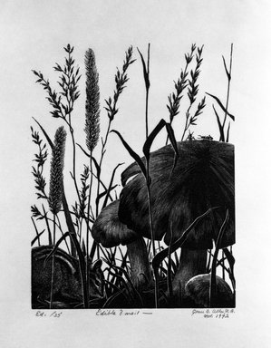 Grace Arnold Albee (American, 1890-1995). <em>Edible? No. 1</em>, 1972. Wood engraving on paper, Image: 6 3/16 x 4 3/4 in. (15.7 x 12.1 cm). Brooklyn Museum, Gift of the artist, 76.198.78. © artist or artist's estate (Photo: Brooklyn Museum, 76.198.78_bw.jpg)