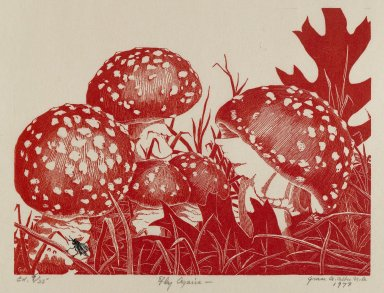Grace Arnold Albee (American, 1890-1995). <em>Fly Argaric</em>, 1973. Wood engraving on paper, Sheet: 8 5/8 x 10 3/8 in. (21.9 x 26.4 cm). Brooklyn Museum, Gift of the artist, 76.198.93. © artist or artist's estate (Photo: Brooklyn Museum, 76.198.93_PS4.jpg)