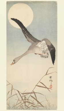 Ohara Koson (Shoson) (Japanese, 1877-1945). <em>Goose in Flight with Moon</em>, 1930-1939. Color woodblock print on paper, 14 7/8 x 6 7/8 in. (37.8 x 17.5 cm). Brooklyn Museum, Gift of Mr. and Mrs. Peter P. Pessutti, 77.264.5 (Photo: Brooklyn Museum, 77.264.5_IMLS_PS3.jpg)