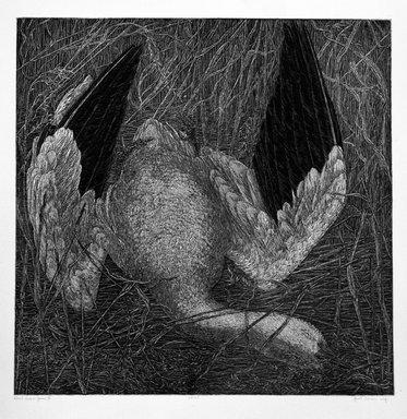 Janet Turner (American, 1914-1988). <em>Dead Snow Goose II</em>, 1974. Woodcut on paper, sheet: 22 1/4 x 20 3/4 in. (56.5 x 52.7 cm). Brooklyn Museum, Gift of ADI Gallery, 77.62.9. © artist or artist's estate (Photo: Brooklyn Museum, 77.62.9_bw.jpg)