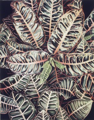 Philip L. Michelson (American, born 1948). <em>Croton</em>, 1979. Watercolor on paper, sheet: 22 1/2 x 30 1/4 in.  (57.2 x 76.8 cm);. Brooklyn Museum, Gift of David Temple, 79.106.3. © artist or artist's estate (Photo: Brooklyn Museum, 79.106.3.jpg)