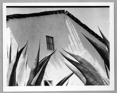 Manuel Álvarez Bravo (Mexican, 1902-2002). <em>Ventana a los Magueyes</em>, 1974-1976. Gelatin silver photograph, image: 7 1/8 x 9 7/8 in. (18.1 x 25.1 cm). Brooklyn Museum, Gift of William Berley, 79.294.3. © artist or artist's estate (Photo: Brooklyn Museum, 79.294.3_bw.jpg)