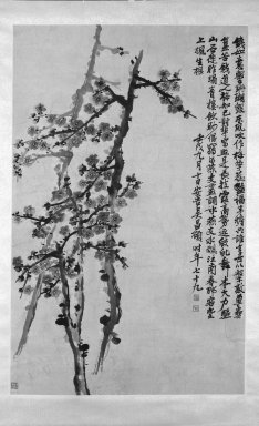 Wu Changshuo (Chinese, 1844-1927). <em>Plum Blossoms</em>, 1922. Ink and color on paper, With mount: 86 1/4 x 26 in. (219.1 x 66 cm). Brooklyn Museum, Gift of Mr. and Mrs. Carl L. Selden, 80.186 (Photo: Brooklyn Museum, 80.186_bw_IMLS.jpg)