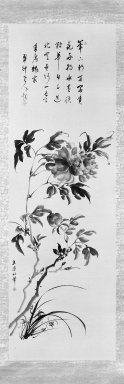 Tachihara Kyosho (Japanese, 1785-1840). <em>Peonies and Orchids</em>, ca. 1790-1810. Ink and slight color on paper, 50 x 16 in. (127 x 40.6 cm). Brooklyn Museum, Gift of Dr. and Mrs. Robert Feinberg, 80.257.1 (Photo: Brooklyn Museum, 80.257.1_bw_IMLS.jpg)