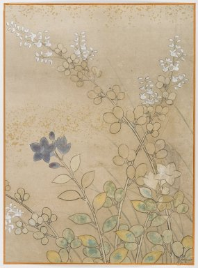 <em>Bush Clover and Chinese Bell Flowers, Album Leaf Painting</em>, 18th century. Album leaf, ink and color on paper, 15 1/8 x 11 1/8 in. (38.4 x 28.3 cm). Brooklyn Museum, Gift of Dr. Fred S. Hurst, 81.287.13 (Photo: Brooklyn Museum, 81.287.13_IMLS_PS4.jpg)