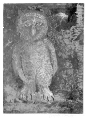 Consuelo Kanaga (American, 1894-1978). <em>[Untitled] (Owl)</em>. Pastel and watercolor on paper, mounted, Sheet: 14 x 10 1/8 in.  (35.6 x 25.7 cm);. Brooklyn Museum, Gift of Wallace B. Putnam, 81.318.28 (Photo: Brooklyn Museum, 81.318.28_bw.jpg)