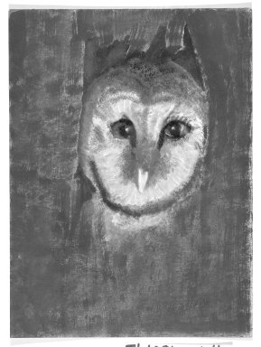 Consuelo Kanaga (American, 1894-1978). <em>[Untitled] (Owl)</em>. Pastel and crayon on canvas, 11 3/4 x 8 3/4 in.  (29.8 x 22.2 cm). Brooklyn Museum, Gift of Wallace B. Putnam, 81.318.4 (Photo: Brooklyn Museum, 81.318.4_bw.jpg)