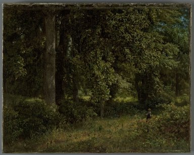 William Trost Richards (American, 1833-1905). <em>Tulip Trees</em>, 1859. Oil on canvas, 13 1/4 x 17 1/16 in. (33.7 x 43.3 cm). Brooklyn Museum, Gift of Nancy Carey, 81.63 (Photo: Brooklyn Museum, 81.63_PS2.jpg)