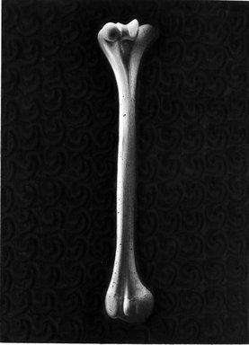 Stephen Rueckert (American, born 1953). <em>Pure Bone</em>, 1982. Graphite on paper, sheet: 11 1/8 x 14 1/8 in. (28.3 x 35.9 cm). Brooklyn Museum, Caroline A.L. Pratt Fund, 82.100.2. © artist or artist's estate (Photo: Brooklyn Museum, 82.100.2_bw.jpg)