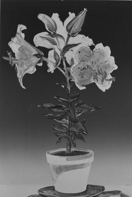 Gary Alan Bukovnik (American, born 1947). <em>Rubrum Lily</em>, 1982. Monotype on paper, Image: 36 11/16 x 24 3/4 in. (93.2 x 62.8 cm). Brooklyn Museum, Gift of Wendy Lang, 82.147.1. © artist or artist's estate (Photo: Brooklyn Museum, 82.147.1_bw.jpg)