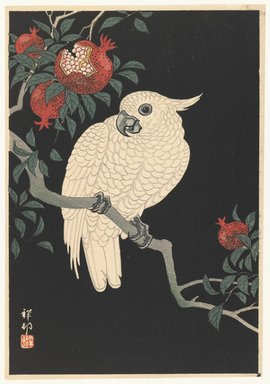 Ohara Koson (Shoson) (Japanese, 1877-1945). <em>Cockatoo and Pomegranate</em>, 1930-1939. Color woodblock print on paper, 10 x 7 in. (25.4 x 17.8 cm). Brooklyn Museum, Gift of Mr. and Mrs. Peter P. Pessutti, 82.186.3 (Photo: Brooklyn Museum, 82.186.3_IMLS_PS3.jpg)