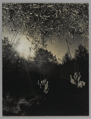 Consuelo Kanaga (American, 1894-1978). <em>[Untitled] (Putnam Pond)</em>. Gelatin silver photograph, Flush Mounted: 13 x 10 in. (33 x 25.4 cm). Brooklyn Museum, Gift of Wallace B. Putnam from the Estate of Consuelo Kanaga, 82.65.100 (Photo: Brooklyn Museum, 82.65.100_PS1.jpg)