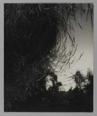 Consuelo Kanaga (American, 1894-1978). <em>[Untitled]</em>. Gelatin silver photograph, Flush Mounted: 11 5/8 x 9 5/8 in. (29.5 x 24.4 cm). Brooklyn Museum, Gift of Wallace B. Putnam from the Estate of Consuelo Kanaga, 82.65.108 (Photo: Brooklyn Museum, 82.65.108_PS1.jpg)