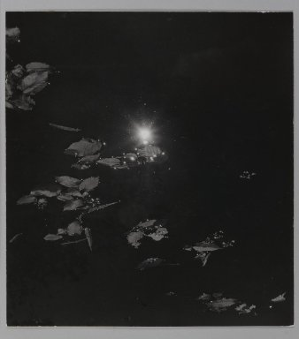 Consuelo Kanaga (American, 1894-1978). <em>[Untitled] (Leaves Floating in Water)</em>. Gelatin silver photograph, Flush Mounted: 11 1/2 x 10 3/8 in. (29.2 x 26.4 cm). Brooklyn Museum, Gift of Wallace B. Putnam from the Estate of Consuelo Kanaga, 82.65.114 (Photo: Brooklyn Museum, 82.65.114_PS1.jpg)