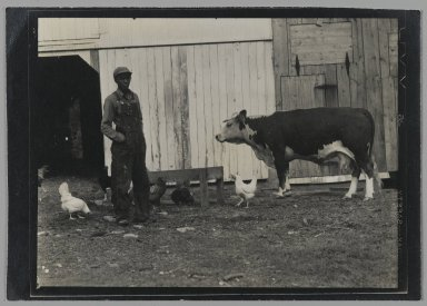 Consuelo Kanaga (American, 1894-1978). <em>[Untitled] (Man and Animals in Barnyard)</em>, late 1940s. Gelatin silver photograph, 3 1/4 x 4 5/8 in. (8.3 x 11.7 cm). Brooklyn Museum, Gift of Wallace B. Putnam from the Estate of Consuelo Kanaga, 82.65.154 (Photo: Brooklyn Museum, 82.65.154_PS2.jpg)