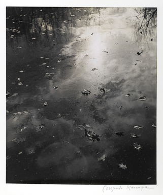 Consuelo Kanaga (American, 1894-1978). <em>[Untitled] (Fall Afternoon)</em>, 1936. Toned gelatin silver photograph, 12 1/2 x 10 5/8 in. (31.8 x 27 cm). Brooklyn Museum, Gift of Wallace B. Putnam from the Estate of Consuelo Kanaga, 82.65.2251 (Photo: Brooklyn Museum, 82.65.2251_PS1.jpg)