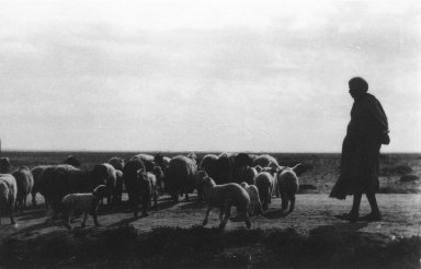 Consuelo Kanaga (American, 1894-1978). <em>[Untitled] (Sheep Herder, North Africa)</em>, 1928. Gelatin silver photograph, 4 1/4 x 6 1/4 in. (10.8 x 15.9 cm). Brooklyn Museum, Gift of Wallace B. Putnam from the Estate of Consuelo Kanaga, 82.65.2651 (Photo: Brooklyn Museum, 82.65.2651_bw_IMLS.jpg)