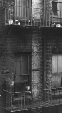 Consuelo Kanaga (American, 1894-1978). <em>[Untitled] (Tenement, Child on Fire Escape, New York)</em>, mid-late 1930s. Gelatin silver photograph, 7 x 3 7/8 in. (17.8 x 9.8 cm). Brooklyn Museum, Gift of Wallace B. Putnam from the Estate of Consuelo Kanaga, 82.65.315 (Photo: Brooklyn Museum, 82.65.315_bw_IMLS.jpg)