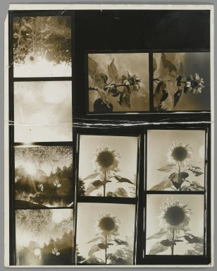Consuelo Kanaga (American, 1894-1978). <em>[Untitled]</em>. Gelatin silver photograph, contact sheet of 10: 10 x 8 in. (25.4 x 20.3 cm). Brooklyn Museum, Gift of Wallace B. Putnam from the Estate of Consuelo Kanaga, 82.65.350 (Photo: Brooklyn Museum, 82.65.350_PS2.jpg)